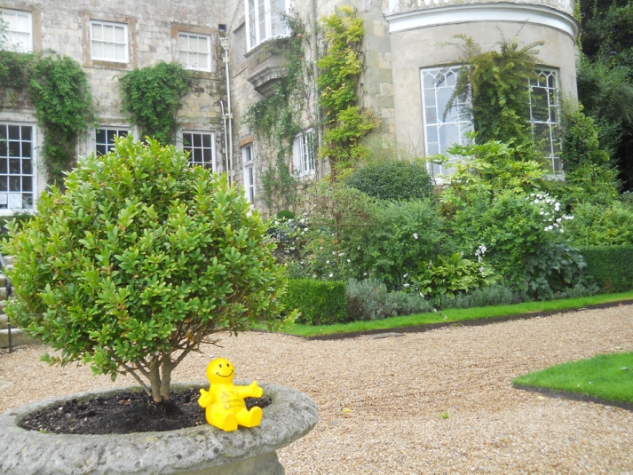 Squidgeworth at Firle Place