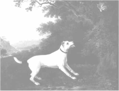 Smooth Fox Terrier, c. 1790, John Boultbee. Oil on canvas. Private Collection. Photography by Grant Taylor. DOG PAINTING, 1840-1940, William Secord, 1992.