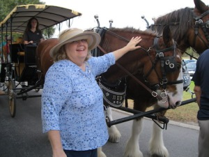 carriagehorsebarb3-copy